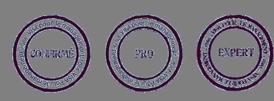 FORA visuel des 3 visas confirme pro et expert pour le parcours de formation visa pour le management